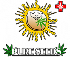 Pure-Seeds-Logo-small